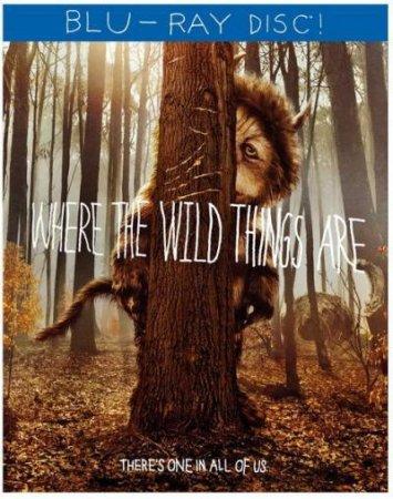 Там, где живут чудовища / Where the Wild Things Are (2009) BDRip 720p